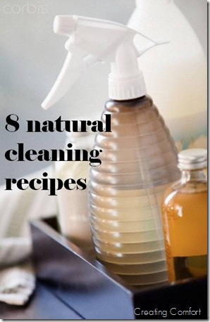 Natural Cleaning Recipes–DIY