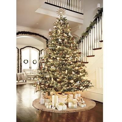 5 Best Christmas Tree Trends