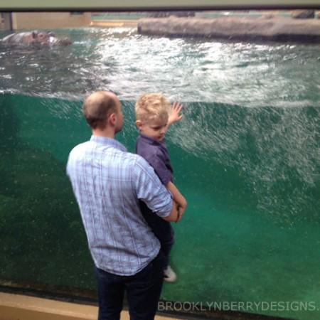 Visit The Calgary Zoo