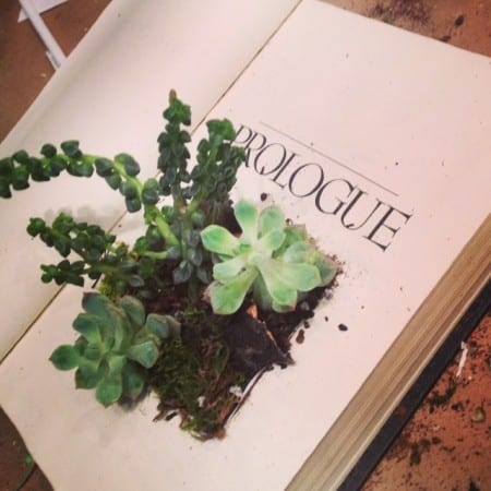 Book Terrarium and Funday Monday Link Party