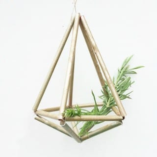 Gold Straw Himelli plant holders
