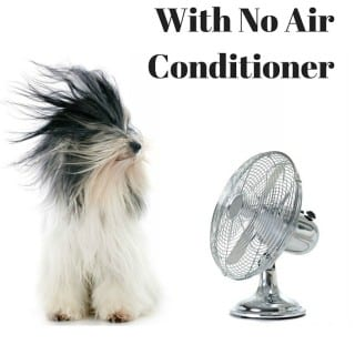 Cool Your House Without Air Conditioner