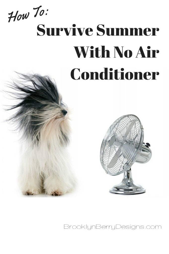 Cool Your House Without Air Conditioner - Brooklyn Berry Designs