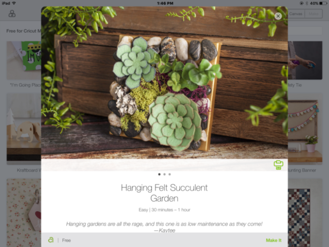 how to make a hanging succulent garden